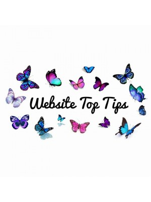 Website Search Tips