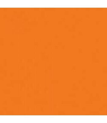 Torrid Orange Amer Neon 2oz Craft Paint