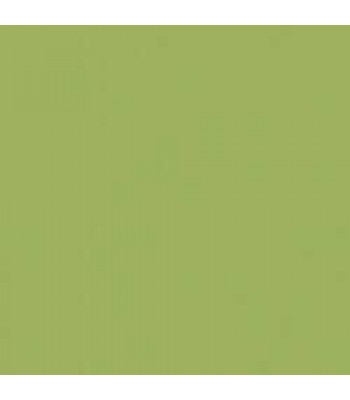 Hauser Light Green Amer Acrylc 8oz craft paints