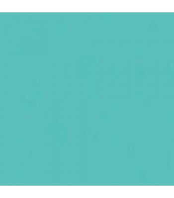 Acrylic (Crafters Acrylic) Turquoise 2oz