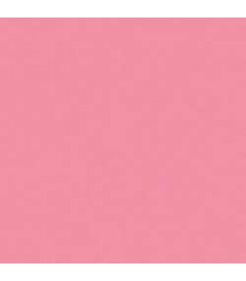Acrylic (Crafters Acrylic) Wild Rose Pink 2oz